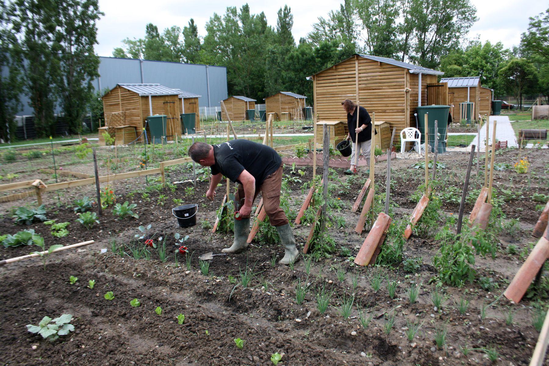 Jardins familiaux aucamville for Jardin familiaux