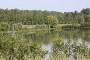 Lac du Bocage à Fenouillet